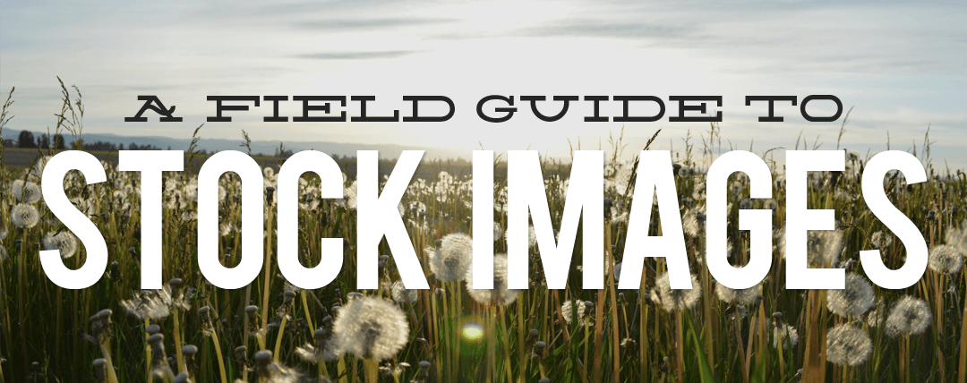 A Field Guide to Stock Images