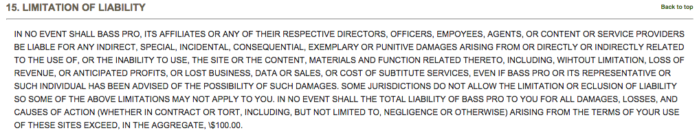 This is an example of a limitations and liability section