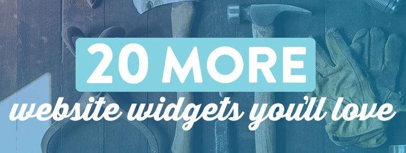 20 more website widgets